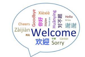Portfolio for English to Mandarin translation