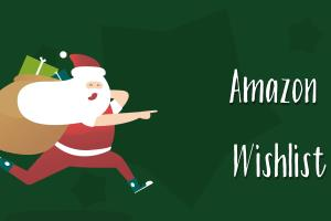 Portfolio for 500 Amazon Wishlist For Product Ranking