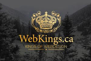 Portfolio for Need a Website? We Can Help...