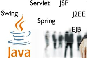 Portfolio for Java/J2EE Developer