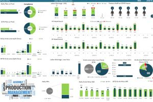 Portfolio for MS Excel Advanced Dashboard