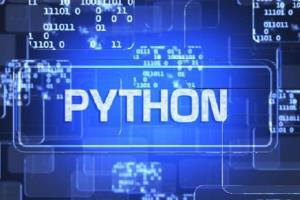 Portfolio for python expert