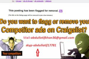 Portfolio for Craigslist Flagging Service