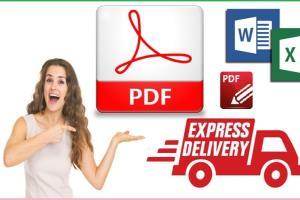 Portfolio for Data Entry Lead Genaration & PDF convert