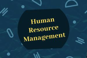 Portfolio for Articles or papers on HRM