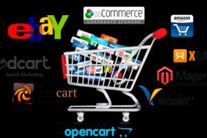 Portfolio for E commerce Website developer