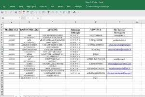 PDF to Excel Conversion of Contact