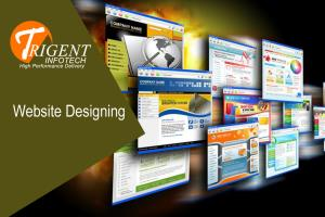 Portfolio for Web Application/ Website Development