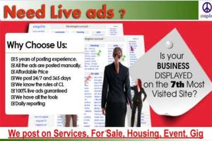 Portfolio for Classifieds ads posting in USA Cities