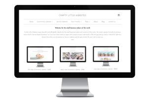 Portfolio for Shopify Website Creative