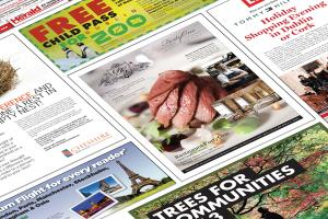 Portfolio for Advertisements: Print or Online