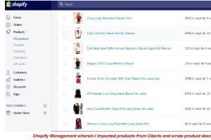 Portfolio for Shopify Management