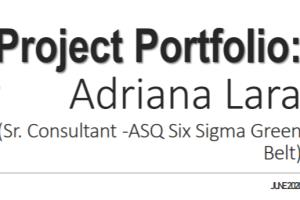 Portfolio for Project Manager