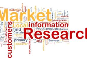 Portfolio for Market Research/Customer Research