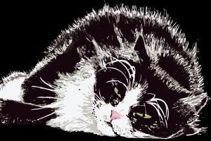 Portfolio for Cat Illustrations