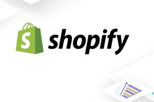 Portfolio for Shopify| Woocommerce | FB Ads| Trading