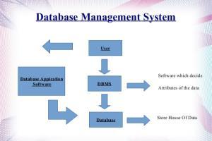 Portfolio for Database Management.