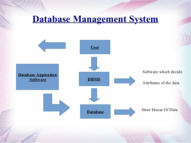 DATABASE MANAGEMENT EBOOK