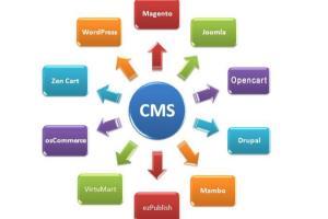 Portfolio for WordPress/uploading/Virtual Assistant/DE