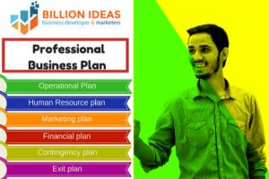 Portfolio for Professional business plan