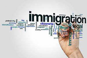 Portfolio for Sync visas Reviews