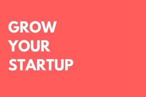 Portfolio for Startup Consulting