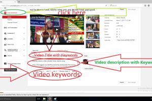 Portfolio for Youtube Expert
