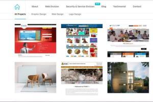 Portfolio for Wordpress Website Creation,Customization