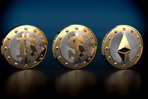 Portfolio for Development of New Coins