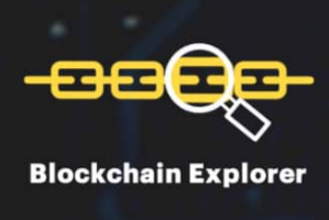 Portfolio for Block Explorer Development
