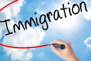 Portfolio for Migration Consultants in Dubai