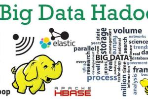 Portfolio for BIGDATA , HADOOP, DATA SCIENCE SERVICES