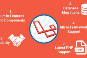 Portfolio for Laravel Development Company