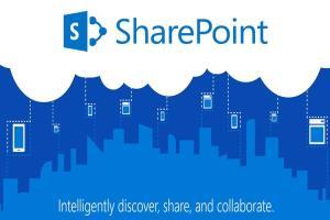 Portfolio for SharePoint Development and Customization