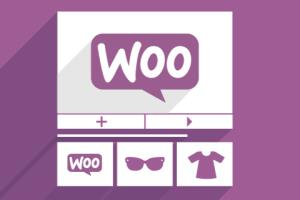 Portfolio for WooCommerce Development Company