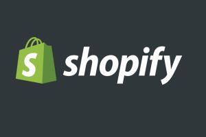 Portfolio for Your Shopify Store Virtual Assistant