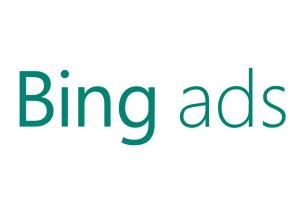 Portfolio for I Will Setup Your Bing Ads Campaign