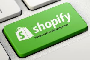Portfolio for Shopify Store Build & Maintenance
