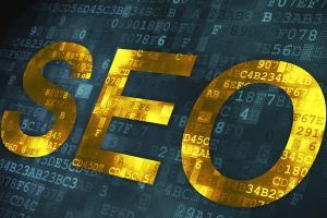 Portfolio for Search Engine Optimization Specialist