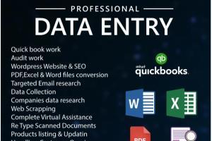 Portfolio for Data entry, PDF conversion, SEO