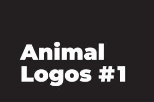 Portfolio for Clean Geometric Animal Icon/Illustration