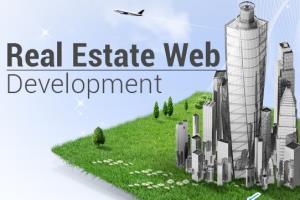 Portfolio for Real-estate Website Development