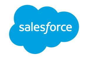 Portfolio for Salesforce Admin