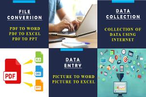 Portfolio for Data Entry, and File conversion