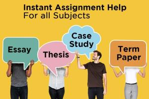 Portfolio for APA and MLA Research Papers