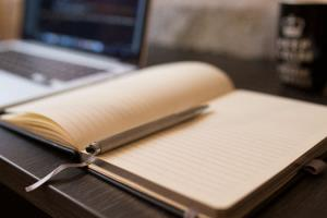Portfolio for Essay Writing