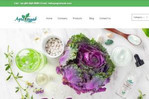 Portfolio for Website Design Service