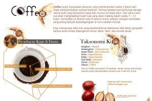 Portfolio for make clean infographic design