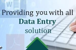 Portfolio for Data - Entry, Typing, Conversions