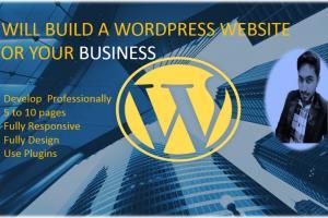 Portfolio for Will Build Stunning WordPress Websites